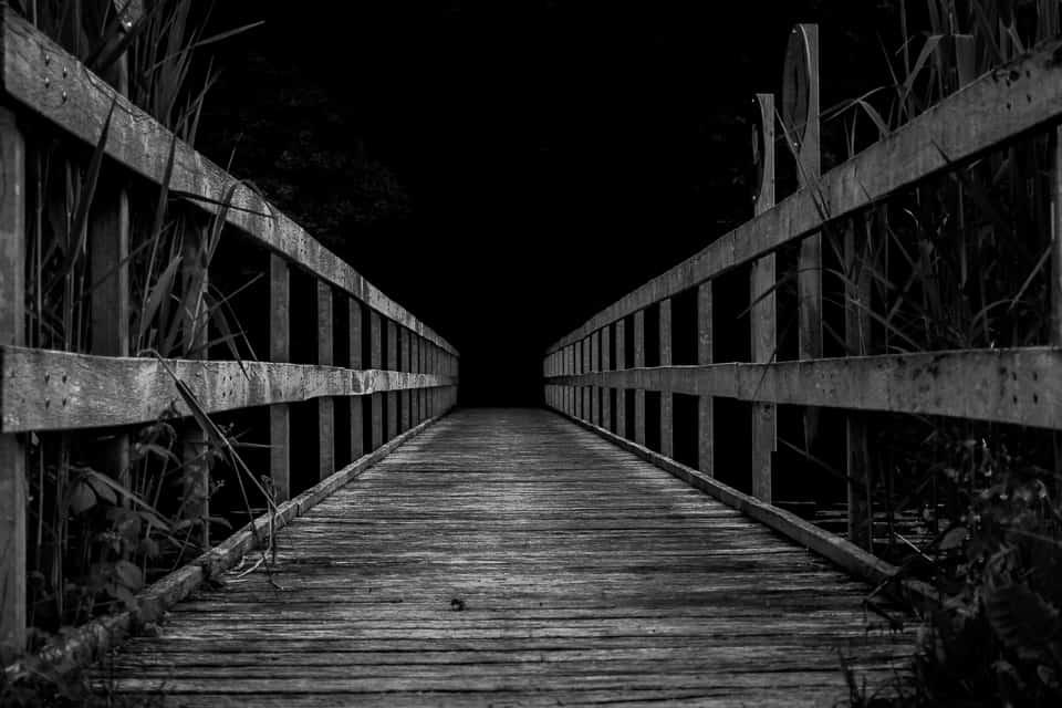 Brücke ins Dunkel