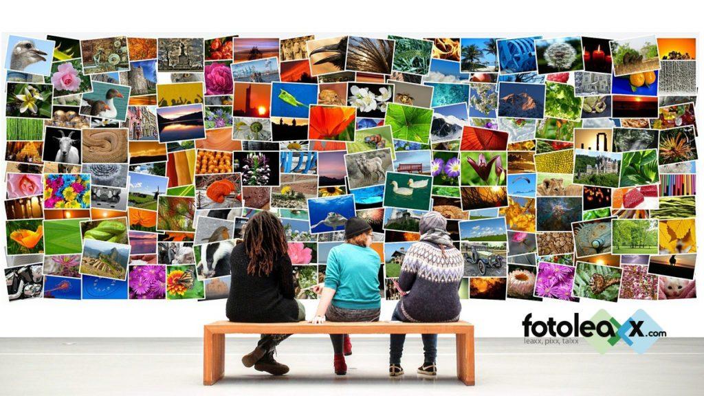 Fotoleaxx